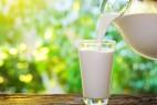 半数中国人竟不知牛奶会使人腹泻