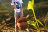 《冰河世纪》毛绒玩具榛果抱枕宣传图
