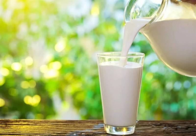 半数中国人喝牛奶会引起腹泻