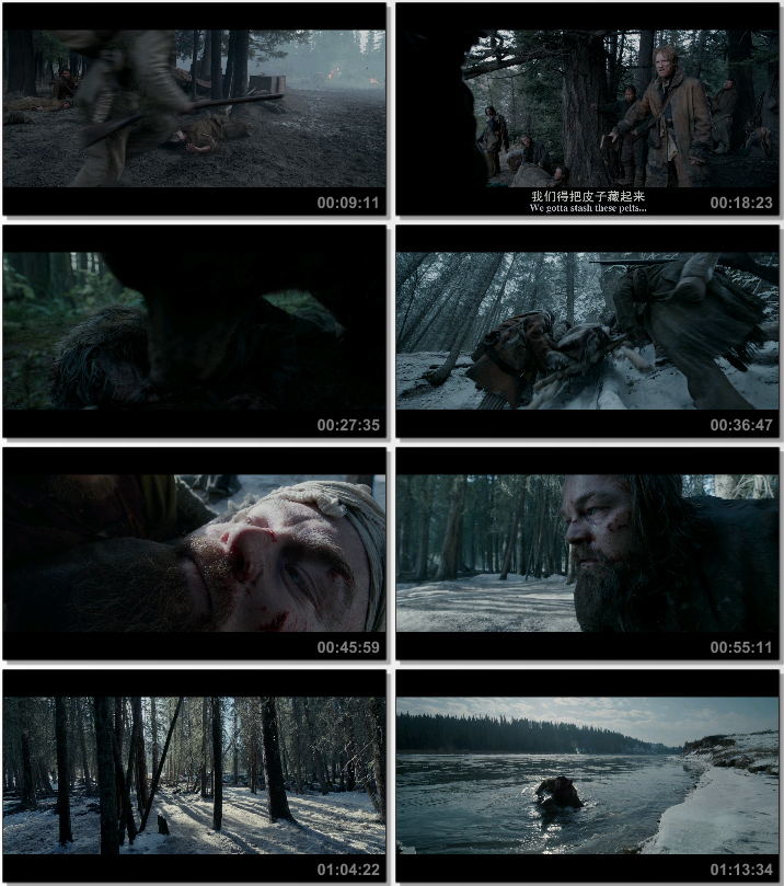 最新电影下载:获奖大片《荒野猎人》BD中英双字幕